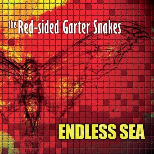 Endless Sea by The Red Sided Grater Snakes